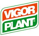 vigorplant.jpg