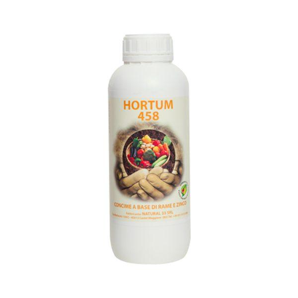 HORTUM 458