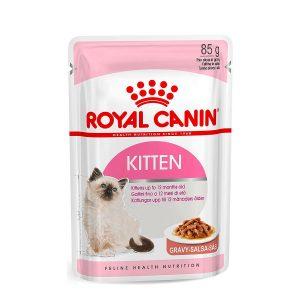 Kitten Gravy