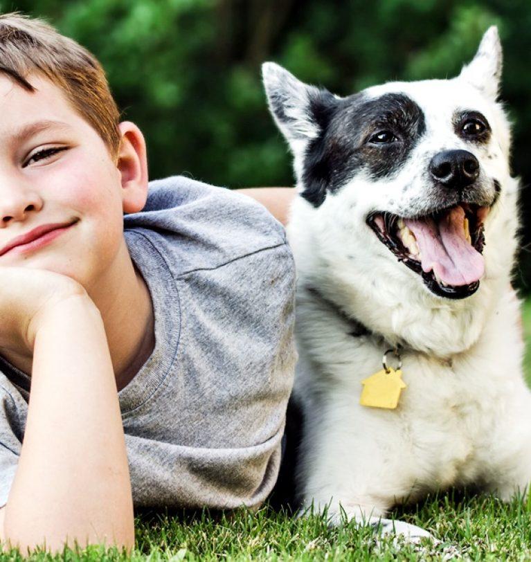 La convivenza tra bambini e cani