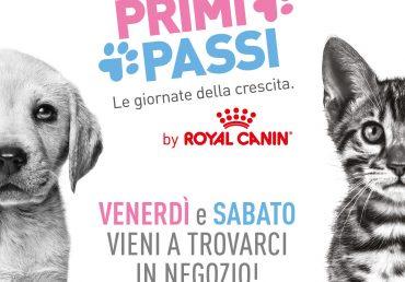 Royal Canin PRIMI PASSI